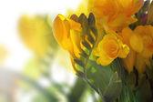 Flores da primavera amarelo — Fotografia Stock