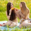 Two beautiful young women on a picnic — Stock Photo #74255287
