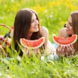 Two beautiful young women on a picnic — Stock Photo #74256161