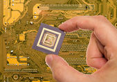 Microprocessor in hand over printed circuit board — Stock Photo