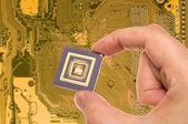 Microprocessor in hand over PCB — Stock Photo
