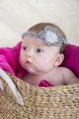 Bambino in cesta — Foto Stock