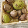 Shellbark hickory nuts in small basket — Stock Photo #63971359