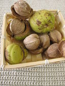 Shellbark hickory nuts in small basket — Stock Photo