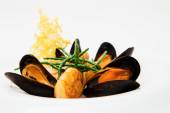 Mollusks and mussels prepared at a restaurant — Stock Photo