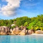 Seychelles beach — Stock Photo #63579559