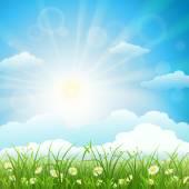 Summer meadow background — Stock Vector