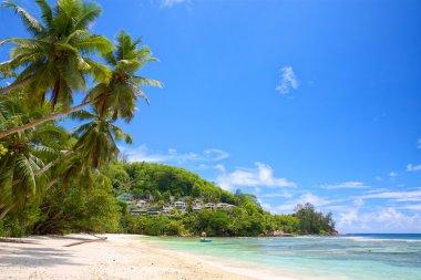 Seychelles summer landscape