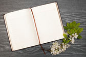 日记和樱桃开花 — 图库照片