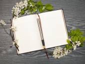 Journal et cherry blossoms — Photo