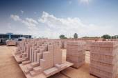 Bricks output in warehouse  — Stockfoto