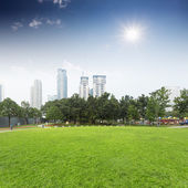 Lawn and cityscape in city park — Stock Photo
