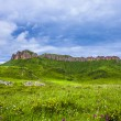 Cloudscape and meadow in tibet highland. — Stock Photo #63618415