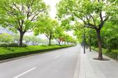 树木装饰在现代城市中的道路 — 图库照片