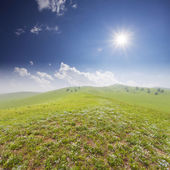 Green field with landscape — Stock Photo