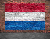 Flag of Netherlands and foreground — Stock Photo