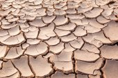 The ground parched and cracked — Stock Photo