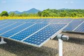 Solar energy panels and sunflower farmland — Stock Photo