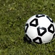 Soccer ball in grass — Stock Photo #53758601