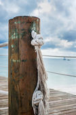 Wooden post with rope handrails on a pier — Foto Stock