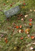 Gravestone in an old cemetery during autumn — Stock Photo