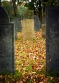 Wchodzą na cmentarz — Zdjęcie stockowe