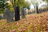 Fall graveyard — Stock Photo