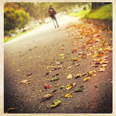 Man walking in autumn — Stock Photo