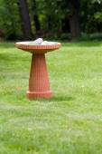 Bird bath — Stock Photo