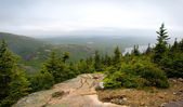 Pemetic Mountain in Acadia National Park — Stock Photo