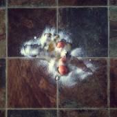 Broken egg with salt sprinked on top — Stock Photo
