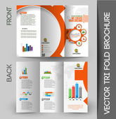 Business Infographic Tri-fold Brochure Design — Stock Vector