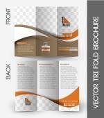 The International School Tri-Fold Mock Brochure — Stock Vector