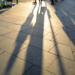 Long shadows — Stock Photo #60703343