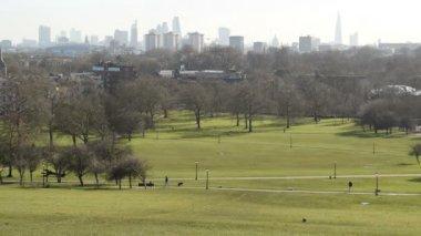 London skyline — Stock Video