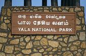 Yala National Park  — Stock Photo