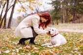 Girl playing and walking with her dog in autumn park — Stok fotoğraf