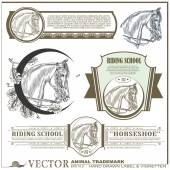 Hand drawn label, sticker & vignetten on the theme of horse — Stock Vector