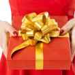 Gift Box Present With Ribbon And Bow, Woman Holding Red Presents In Hands, White Background — Stock Photo #58157407