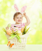Easter Basket Eggs, Spring Objects Decorated by Grass Bird Butterfly over Green — Stock Photo