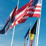 Flags — Stock Photo #65894187