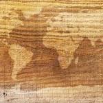 World map wood texture — Stock Photo #65898893