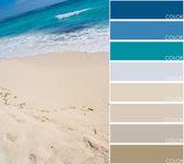Beach color code — Stock Photo