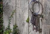 Ancient key ring, rustic garden — Stock Photo