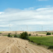 Fields with wind turbines — Stock Photo #65906711
