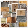 Wood collection — Stock Photo #65910727
