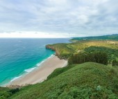 Cove and vegetation — Stock Photo