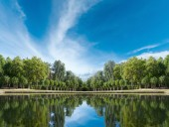 Palace garden pond — Stock Photo