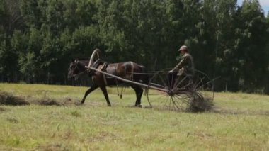 Farmer using horses to pull farm implements. — Stock Video
