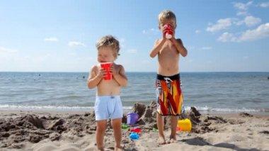 Brothers drinking juice on the seashore — Stock Video